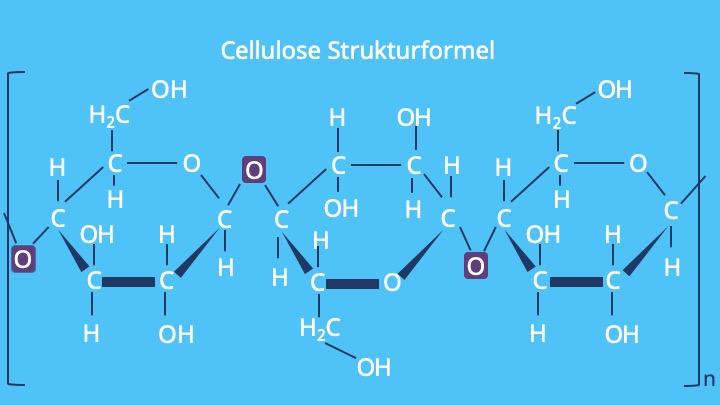 Cellulose Struktur, Zellulose, Strukturformel Cellulose, Was ist Cellulose, Cellulose Aufbau