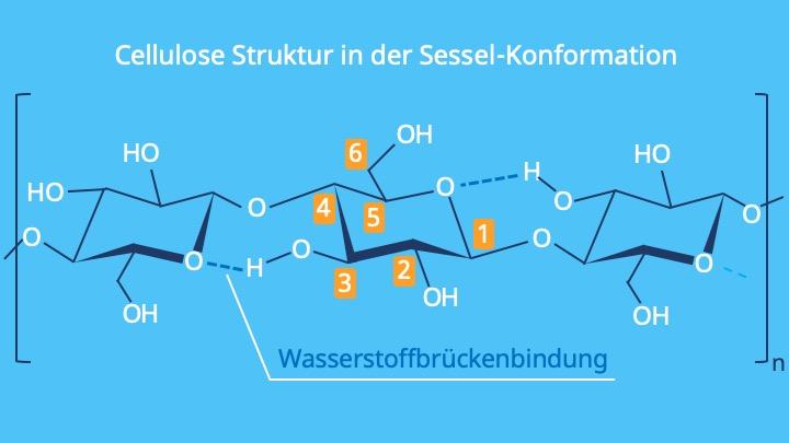 Cellulose Strukturformel, Strukturformel Cellulose, Zellulose, was ist Cellulose, Was ist Zellulose