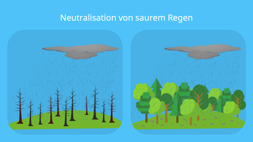 Neutralisation, Neutralisationsreaktion, Saurer Regen