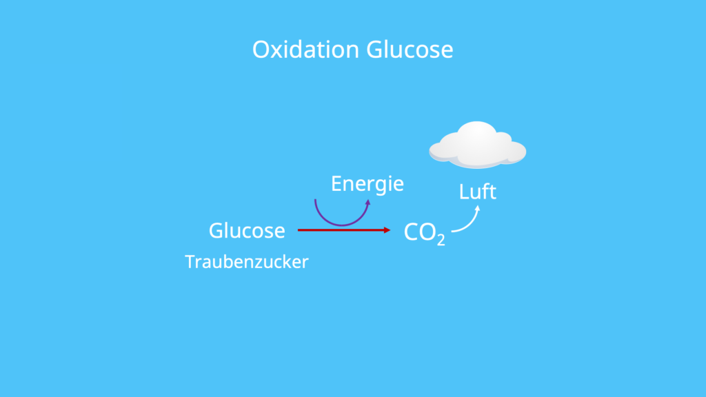 Oxydation, Oxidationsreaktion, oxidiert, oxidieren