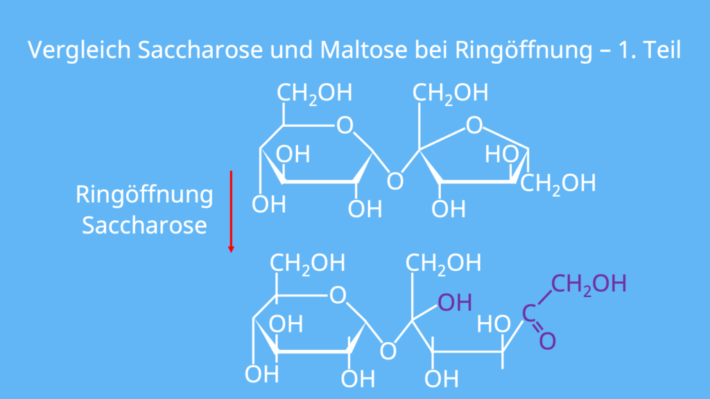 Saccharose Strukturformel, Strukturformel Saccharose, Saccharose Formel, Glykosidische Bindung