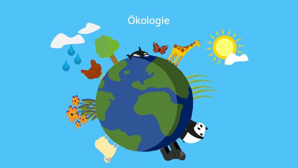 Was bdeutet ökologie, was ist ökologie, Tiere und Pflanzen, biotische und abiotische Faktoren, Ökologie Themen