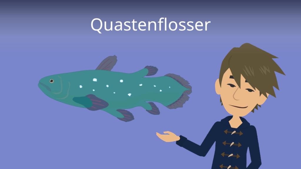 Zum Video: Quastenflosser